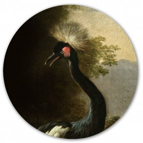 Groovy Magnets - Magnetinis lipdukas - Majestic Crane