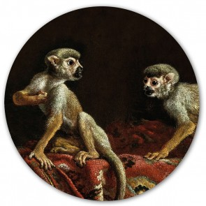 Groovy Magnets - Magnetinis lipdukas - Two little monkeys